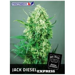 JACK DIESEL (POSITRONICS...