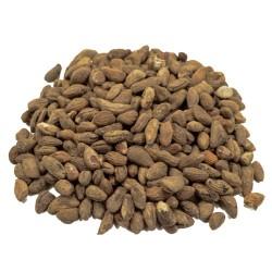 Semillas de Voacanga Africana
