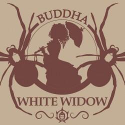 BUDDHA WHITE WIDOW...
